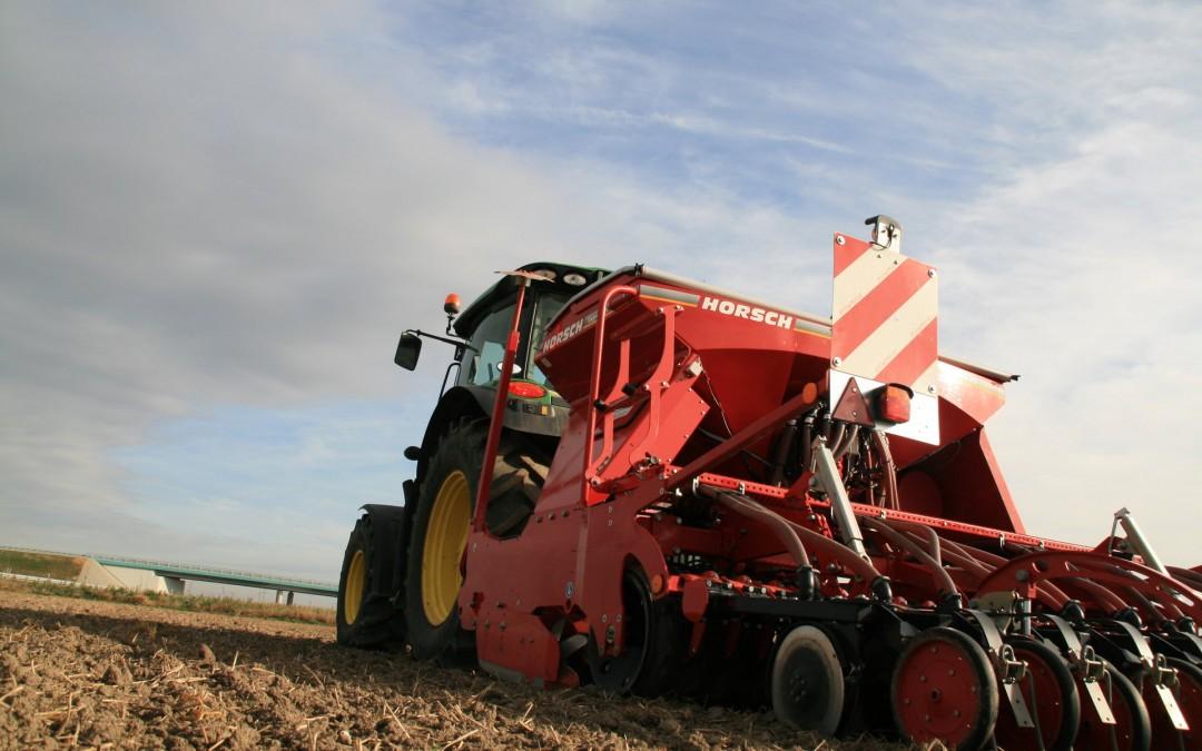 Agrotechnika uprawy pszenicy